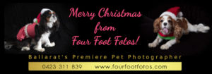 Merry Christmas 2018 from Four Foot Fotos, Ballarat