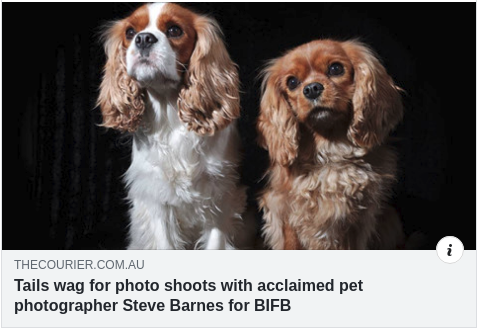 Tails wag for photo shoots with acclaimed pet photographer Steve Barnes for BIFB