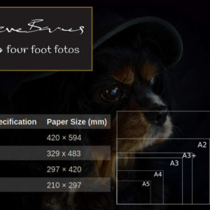 Four Foot Fotos Paper Size Guide