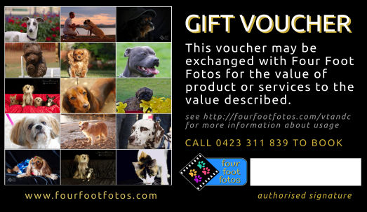 Four Foot Fotos Gift Voucher - customer portion